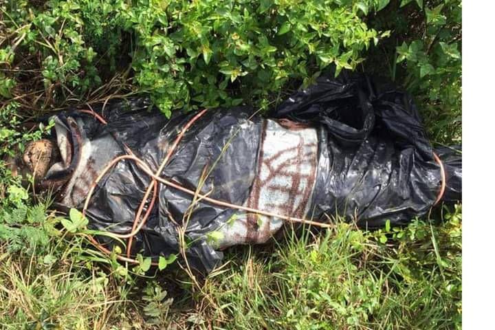 Encuentran cadáver embolsado en Tulum